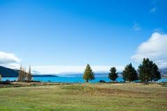 Лужайка на береге озера озера Tekapo Стоковое Изображение