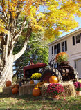 лужайка октябрь стоковое изображение rf