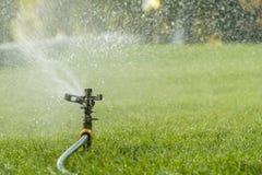 Лужайка оросительной системы сада моча Мочить лужайку в горячем лете Спринклер лужайки spaying вода над зеленой травой Irriga стоковое изображение rf