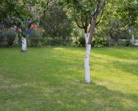 Лужайка перед домом Стоковые Фото