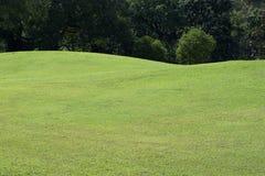 Лужайка поля для гольфа, поля зеленой травы Стоковые Изображения