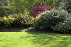 Лужайка сада весны стоковые фотографии rf