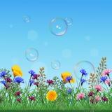 Лужайка с красочными цветками и травами иллюстрация штока