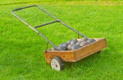 лужайка тележки шаров Стоковые Фото