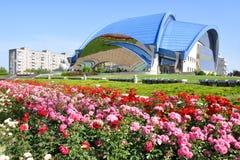 лужайка цветков зеленая Стоковое Изображение RF