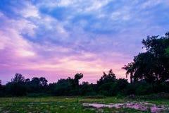 Лужайка ширины с небом после захода солнца стоковое изображение