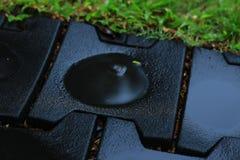 Лужица воды в дожде Стоковое Изображение