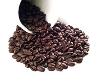 лужица кофе 5 фасолей стоковое изображение