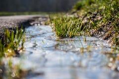 Лужица льда весной Стоковые Изображения