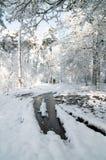 Лужицы расплавленного снежка Стоковое фото RF