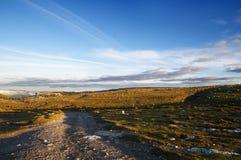Лужки и голубое небо на зоре, Сьерра Salvada Стоковая Фотография RF