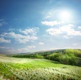 Лужок весны Стоковые Фото