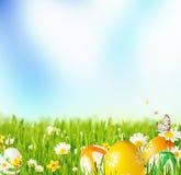 Лужок весны стоковые изображения
