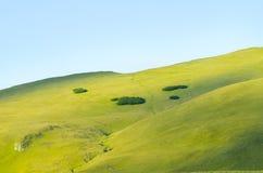 Лужок горы стоковое фото rf
