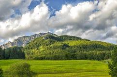 Лужок и гора Стоковые Изображения RF