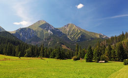 Лужок и гора Стоковое Фото
