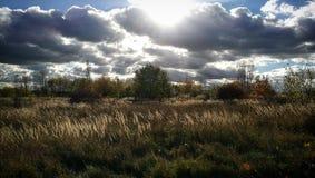 Лужок и облака Стоковое Фото