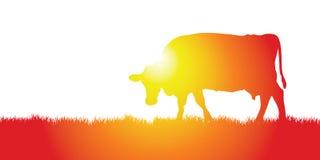 лужок коровы бесплатная иллюстрация