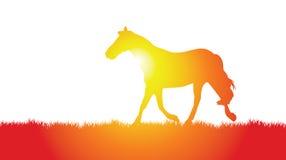 лужок лошади иллюстрация вектора