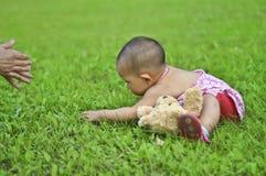 лужок младенца Стоковое фото RF