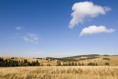 лужок осени Стоковое Фото