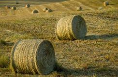 лужок сена Тоскана сельской местности шариков Стоковое Изображение
