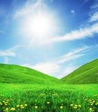 лужок солнечный Стоковое Изображение