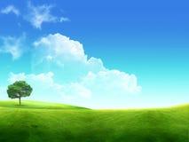 Лужок с зеленой молодой травой и синим Стоковое Изображение RF