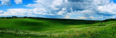 лужок Украина Стоковая Фотография RF