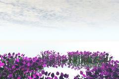 лужок Стоковое Изображение RF