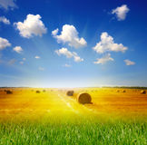 лужок haystack Стоковые Фотографии RF