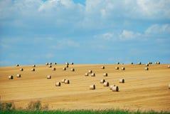 лужок haystacks стоковые фото