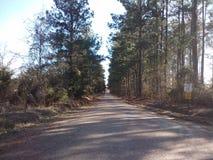 Луизиана стоковое изображение rf