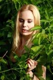 Лукавая блондинка в лесе Стоковая Фотография