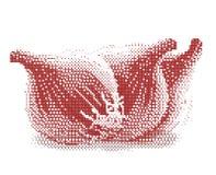 луки halftone Стоковое Фото