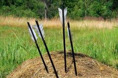 Лук и стрелы в стоге сена Стоковая Фотография RF