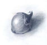 Лук нарисованный карандашем, рукой нарисованный эскиз Стоковые Фотографии RF