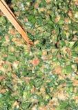 Лук-пореи и завалка вареника свинины Стоковое Фото