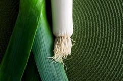 Лук-порей над зеленым цветом Стоковые Изображения