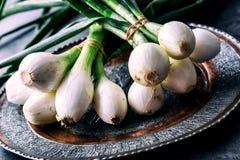 Лук свежий лук свежие зеленые луки Молодые луки на плите свежие здоровые овощи Стоковые Фотографии RF