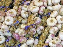 лук чеснока Стоковая Фотография RF