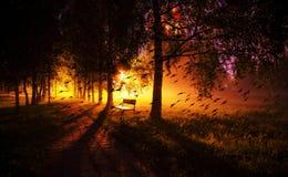 Лунатируйте коллаж стенда ночи в переулке дерева тумана темном с лампами a стоковое изображение rf