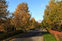Лунатируйте над парком победы Zelenograd, во время sunrize Стоковое фото RF