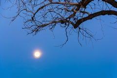 Луна… в пасмурной ноче Стоковое Изображение