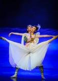 Луна балета цветеня-Hui цветков полностью над Helan Стоковое Фото