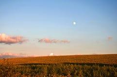 Луна вечера на поле Стоковые Изображения RF