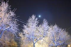 Луна в небе курорт ночи светильника здоровья belokurikha altay снял улицу Сибиря горизонт ночи jpg eps города Строгая красота зам Стоковая Фотография RF