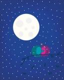 Луна и птицы Стоковая Фотография