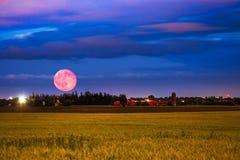 Луна крови поднимая от фермы (к северу от Торонто) Стоковые Фото