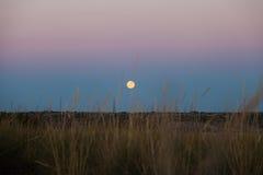 Луна на горизонте Стоковое Изображение RF